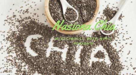 Nasiona Chia Cena – Gdzie kupić? – Właściwości lecznicze