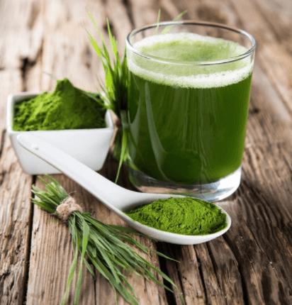 jak przygotować zielony jęczmień
