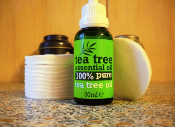 logo - olejek z drzewa herbacianego