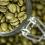 Zielona kawa – idealny środek na odchudzanie? • Właściwości • Cena • Opinie