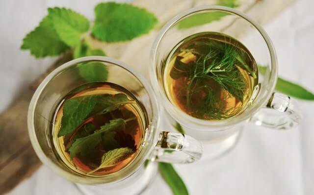 Miłorząb japoński - herbata